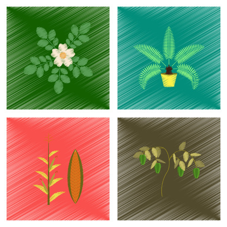 oil crops: assembly flat shading style illustration of rosa majalis phoenix zea mays pepper Illustration