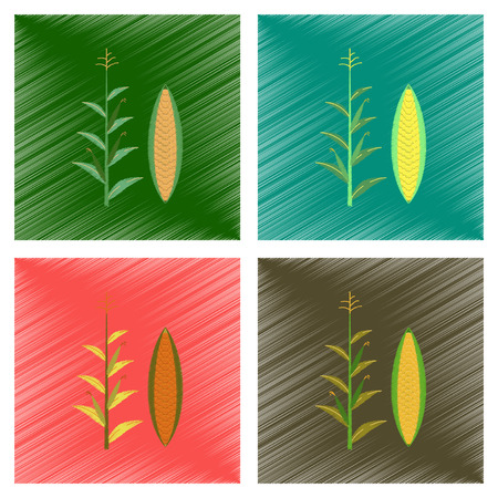 zea mays: assembly flat shading style illustration of zea mays