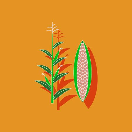 zea mays: paper sticker on stylish background of zea mays