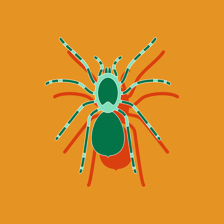 tarantula: paper sticker on stylish background of tarantula