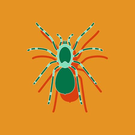 arachnoid: paper sticker on stylish background of tarantula