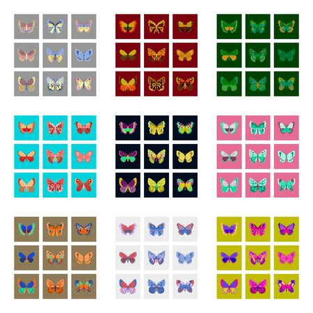 proboscis: Big collection of colorful butterflies