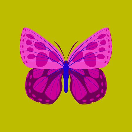 Colorful flat icon of butterfly isolated on green