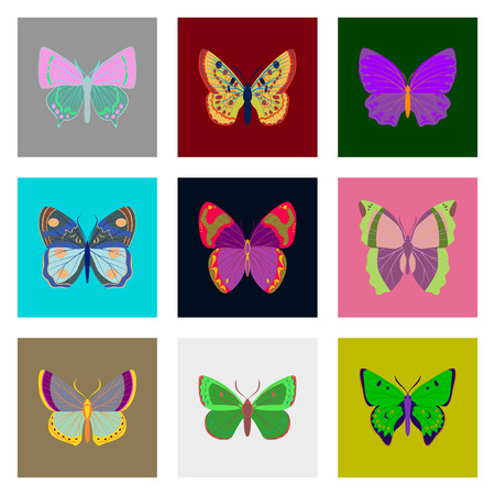 305 Chrysalis Stock Vector Illustration And Royalty Free Chrysalis ...