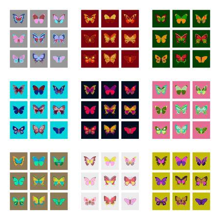 Grote verzameling van kleurrijke vlinders