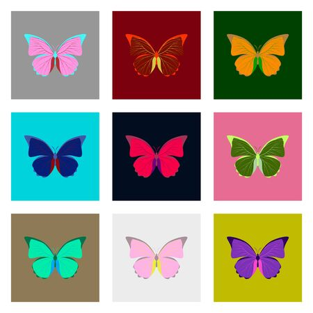 chitin: Big collection of colorful butterflies