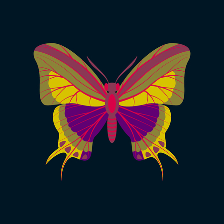 chitin: Colorful flat icon of butterfly isolated on dark blue