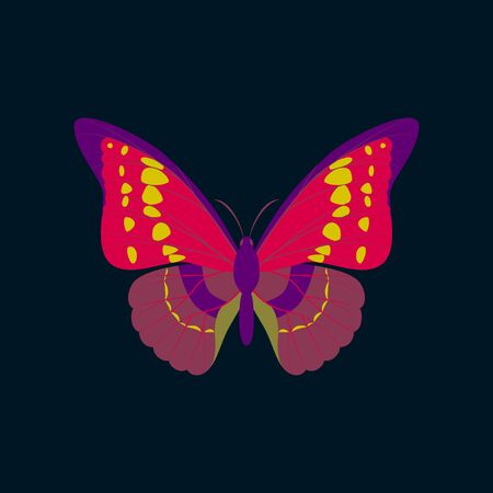 proboscis: Colorful flat icon of butterfly isolated on dark blue