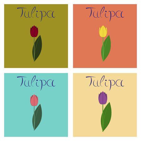assembly flat Illustrations nature plant Tulipa Illustration