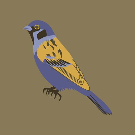 the sparrow: Vector illustration in flat style of sparrow