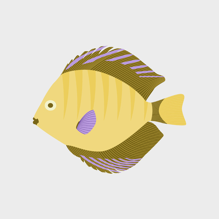 discus: Vector illustration in flat style discus fish