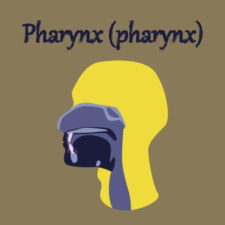 pharynx: human organ icon in flat style pharynx Illustration