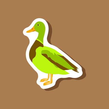 wild duck paper sticker on stylish background
