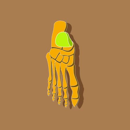 foot skeleton paper sticker on stylish background Illustration