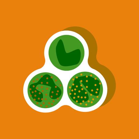 leukocyte: paper sticker on stylish background leukocyte Illustration