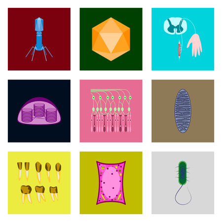 golgi apparatus: icons set in flat style cells viruses teeth