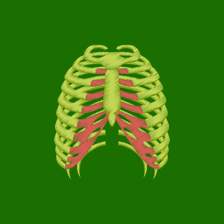 flat shading style icon chest thorax