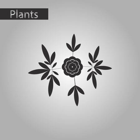 botan: Black and white style icon of flower paeonia