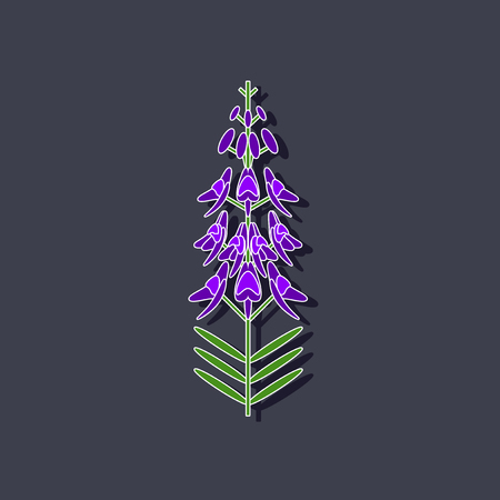 paper sticker on stylish background herb Linaria