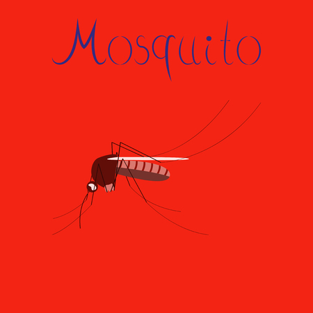 blood sucker: Flat icon on background insect mosquito