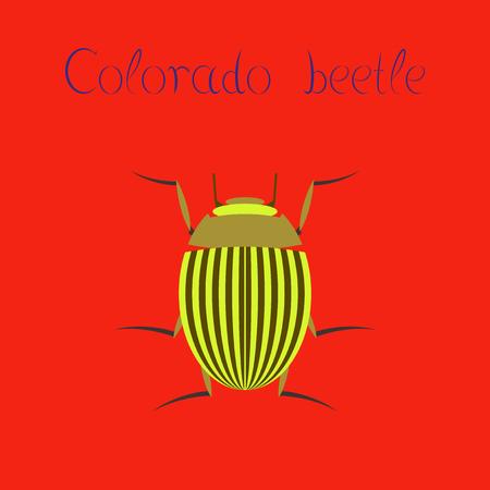 Illustration plate sur l'arrière-plan Beetle du Colorado Banque d'images - 77011887