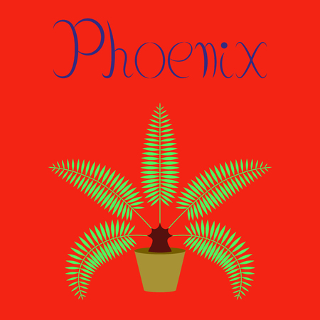flat illustration on background natural phoenix