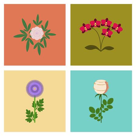 botan: Assembly flat Illustrations flower paeonia chrysanthemum orhidaceae rosa Illustration