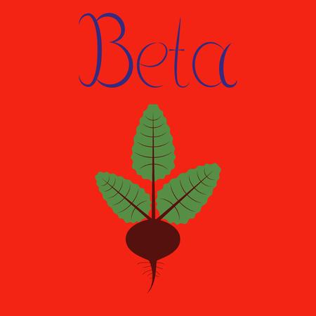 Flat illustration on background plant beta