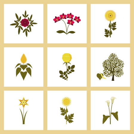 assembly flat Illustrations flower paeonia chrysanthemum orhidaceae rosa calla aster narcissus linden Illustration