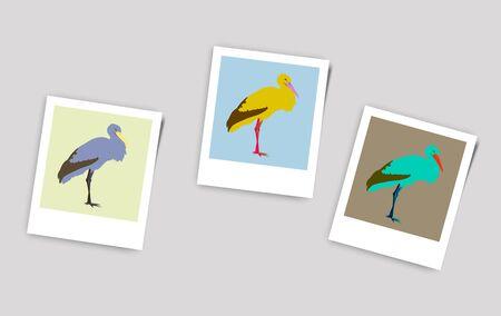 Illustration Polaroid Photo of stork