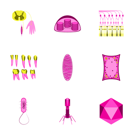 chromosomal: icons set in flat style cells viruses teeth