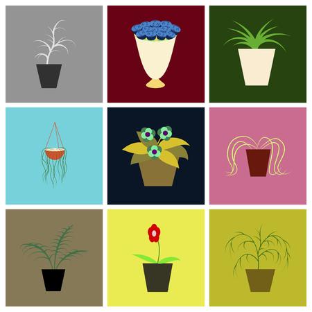 houseplants: assembly flat icons houseplants Illustration