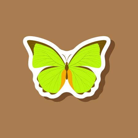 chitin: butterfly paper sticker on stylish background