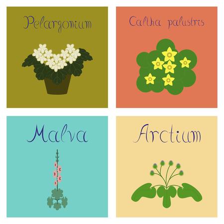assembly of flat Illustrations nature Arctium Malva Caltha Pelargonium Иллюстрация