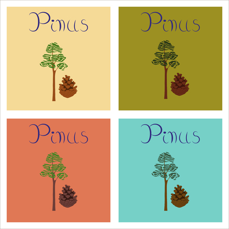 assembly of flat Illustrations nature plant Pinus