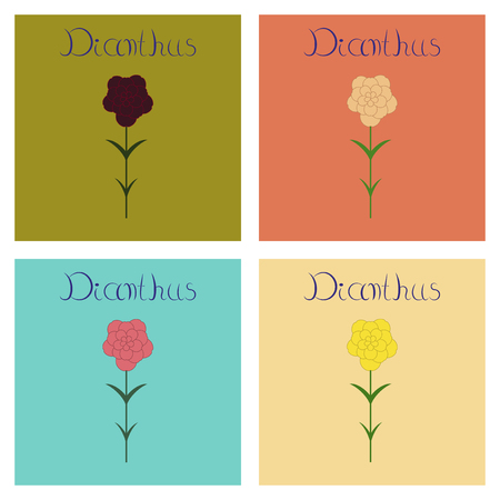 assembly of flat Illustrations nature plant Dianthus