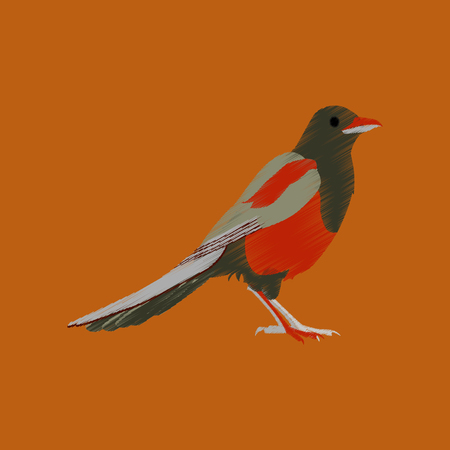 magpie: flat shading style icon magpie
