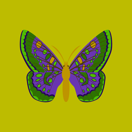 Colorful icon of butterfly isolated on green Illustration