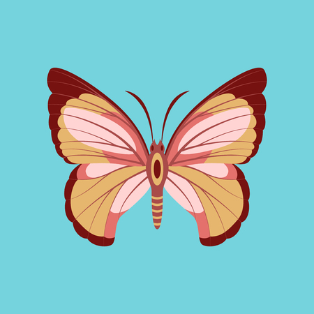 Colorful icon of butterfly isolated on blue Illustration