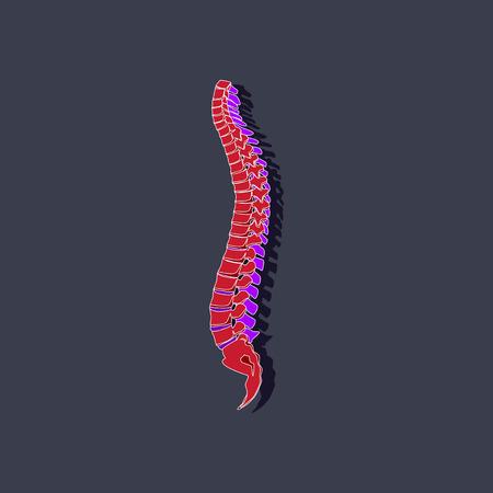 Human vertebral column paper sticker on stylish background Illustration