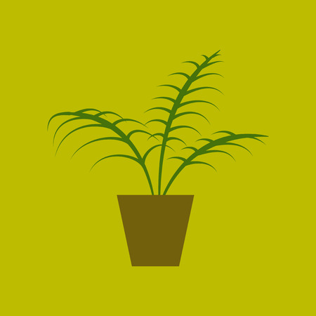 Icon in flat design Ficus Illustration