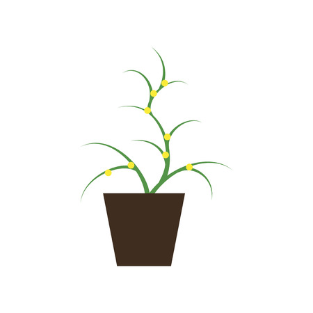aloe vera plant: Icon in flat design flower in pot aloe