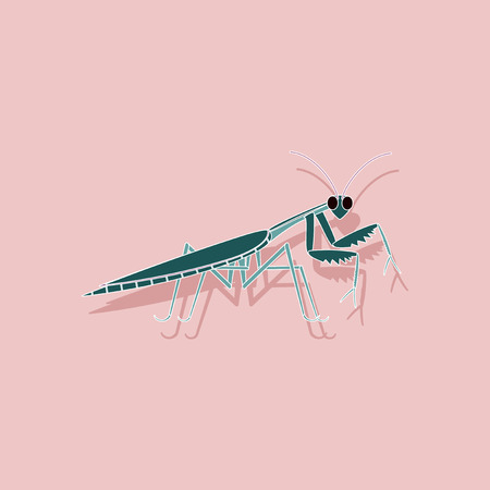 A paper sticker on background of Mantis.