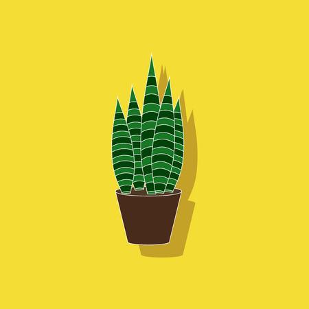 paper sticker on stylish background plant Sansevieria