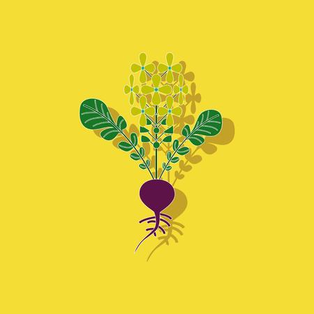 スタイリッシュな背景植物ダイコン紙ステッカー