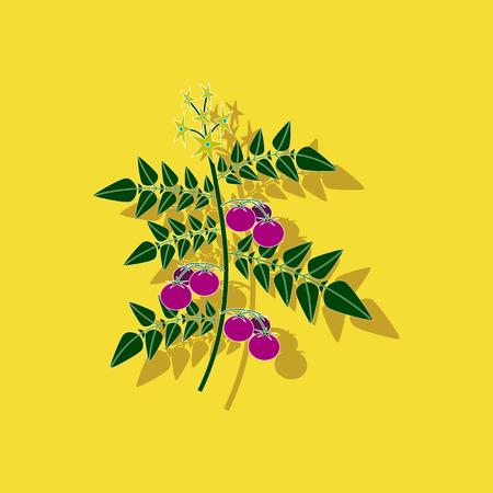 paper sticker on stylish background tomato plant Ilustrace
