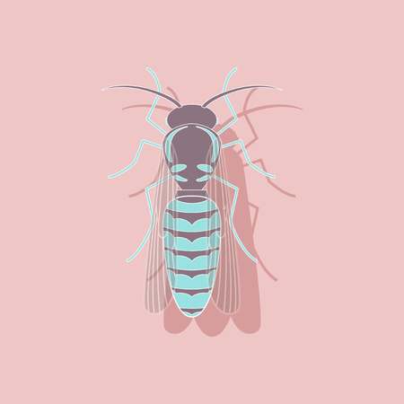 paper wasp: paper sticker on background of wasp
