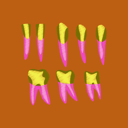 incisor: flat shading style icon tooth