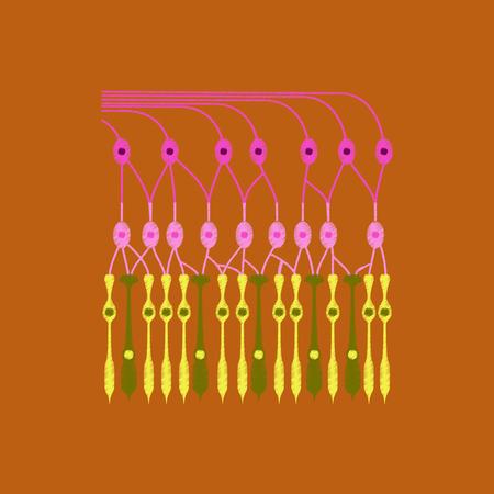 flat shading style icon structure retina