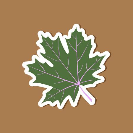 paper sticker on stylish background Maple Leaf Illustration